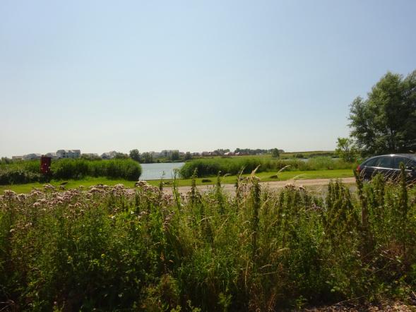 Fishing lakes at Hythe